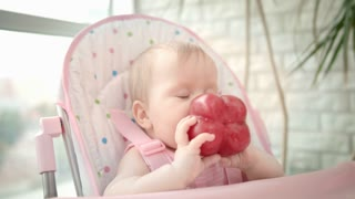 Baby gnawing red pepper in chair. Close up of toddler eating healthy food. Baby vegetable diet. Little child holding red pepper in hands. Healthy nutrition for kids
