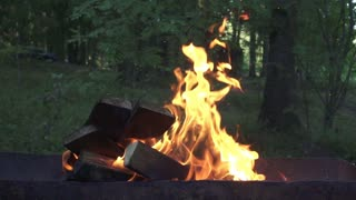 Burning firewood in brazier for cooking food outdoor slow motion. Close up firewood in flame bonfire on barbecue plate on background summer nature in forest