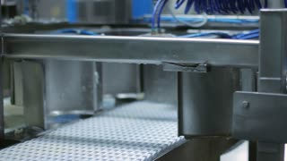Cheese manufacturing line. Cheese production factory. Food production line. Manufacturing process on dairy factory. Food industry concept