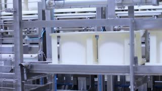 Factory conveyor for production cheese products. Production of cottage cheeses in factory. Cheese production line. Manufacturing of dairy products. Milk products on conveyor