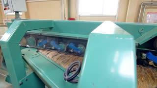 Factory processing equipment. Flax fibers at manufacturing line. Manufacturing process at flax plant. Flax factory working process. Textile production