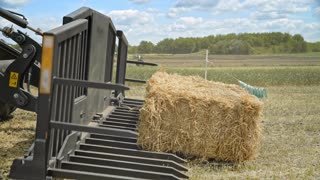 Farming forklift loading bale hay. Agricultural machinery for loading straw on farming field. Farming machinery for transporting straw rolls. Agricultural excavator bucket. Harvesting hay