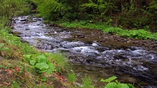Fast mountain river flowing through forest. Narrow mountain river flowing in mountainous area in forest. Beautiful scenery with fast water stream. Spring river water