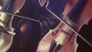 Female cello player playing violoncello. Close up of orchestra instruments play music. Woman hand playing cello. Orchestra musicians cello playing. Woman playing violoncello