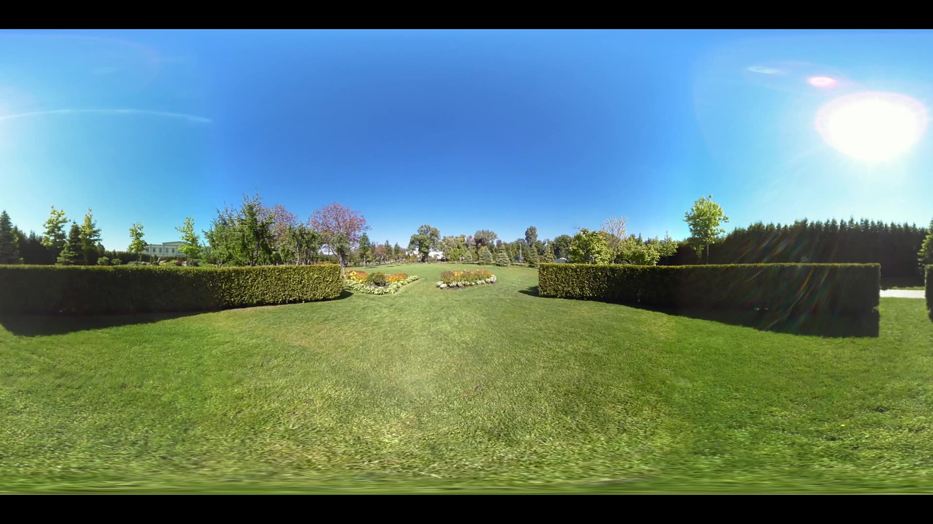 Green lawn in summer city park. Panoramic view green grass in summer park 360 degrees. Nature summer park day. Landscape city park 360 degrees panorama