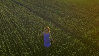 Happy woman running in summer field. Young woman running field. Drone view free woman running in wheat field. Aerial landscape woman in farming field front view. Freedom concept