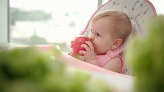 Infant eating apple. Cute baby girl eating apple in high chair. Adorable child tasting fruit. Baby breakfast with fresh fruit. Healthy eating children. Kid enjoy fresh fruits