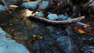 Mountain creek with crystal water in autumn forest. Close up beautiful river stream in wood. Forest stream on rock. Pure fresh water waterfall in nature reserve. Wild water flow