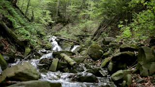 Mountain river flowing between stones in green forest. Beautiful landscape in rocky path. Clear and fast water stream flow around green wet stones. Mountain waterfall landscape