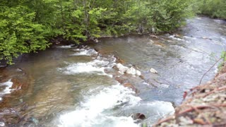 Mountain river flowing in green forest. Beautiful natural landscape. Panorama with forest river. Fast mountain river stream with stony rapids
