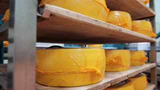 Packaged cheese wheels on shelves in factory warehouse. Technology of cheese production. Wheels cheese stored on shelves of warehouse factory. Dairy production