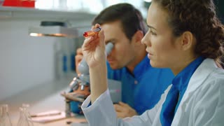 Science researchers team doing lab research. Female scientist research on tablet pc. Close up of female researcher look at liquid. Lab woman using laboratory tablet. Male scientist looking microscope