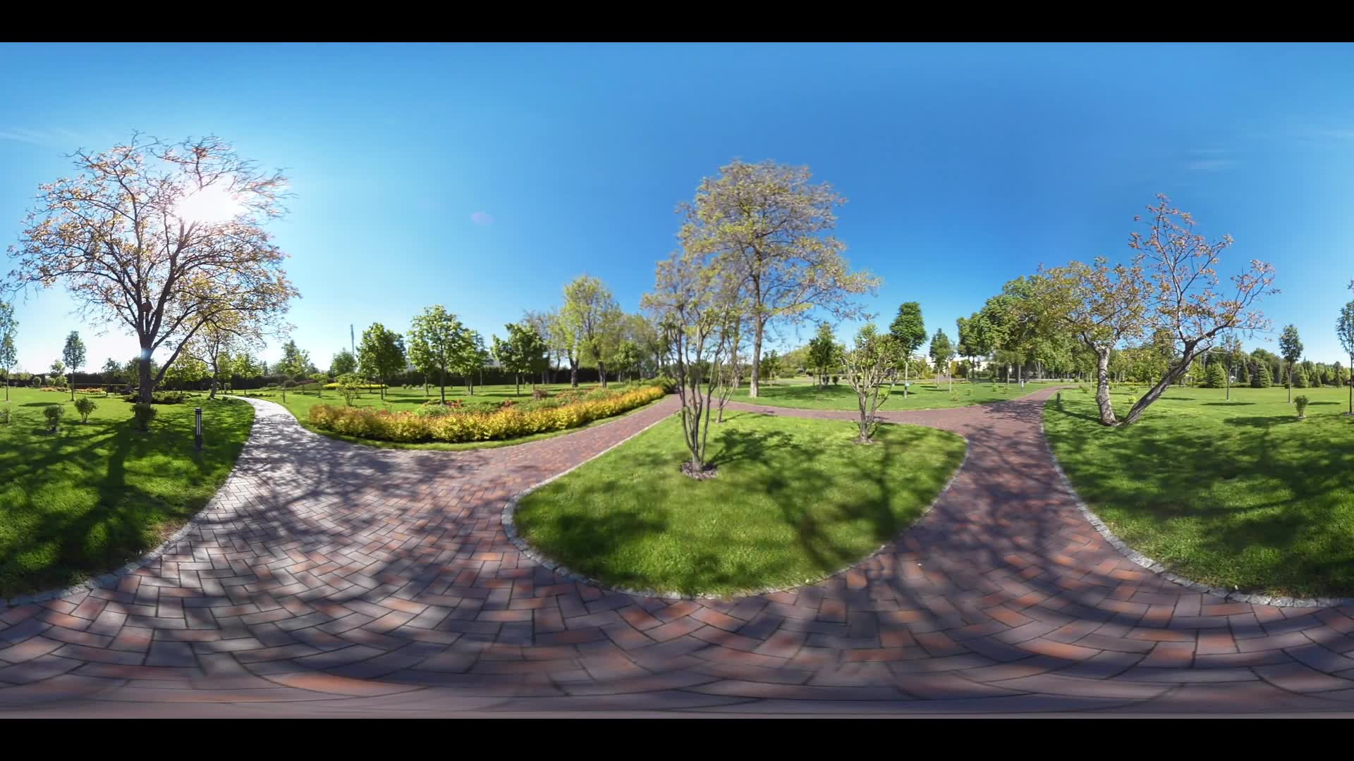 Summer park path panoramic landscape. 360 video of panoramic view nature landscape in summer park. Park path panorama 360 degree view