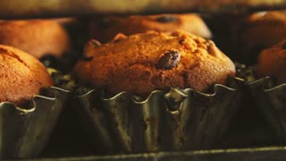 Sweet cupcake in oven. Muffin baking process. Bakery production at food factory. Cupcake baking process. Cupcake bakery production at food factory. Fresh bakery manufacturing. Sweet food industry