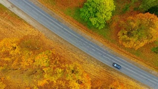 Top view autumn road and cars. City road on autumn background aerial view. Buildings city and car parking drone view. Autumn road cars. Industrial buildings factory sky view