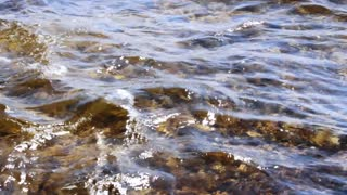 Transparent water sea splashing on sunny day. Reflection sun rays on clean sea surface. Close up sea waves of water splashing