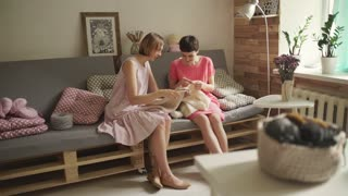 Two woman friends on couch looking on knitting yarn. Two woman friends knitting needles wool clothes in home room