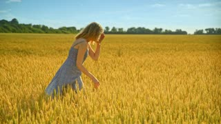 Woman analyzing wheat stalk. Woman agronomist in wheat field. Female farmer working at agriculture land. Beautiful girl in dress looking summer harvest ears. Enjoy nature