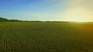 Young woman running in summer field. Young woman running field. Aerial view woman running in green field. Landscape woman in farming field back view. Freedom concept