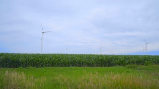 Wind turbines farm on green field. Landscape with wind turbines on meadow. Renewable energy resource. Alternative energy technology. Windfarm landscape. Wind power generation