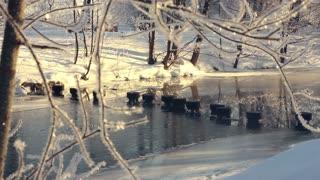 Winter river in park. Winter wonderland. Frozen river in winter park. Winter landscape. Winter nature. Sunny morning in winter park. Metal constructions frozen in winter river. Snow covered riverbank