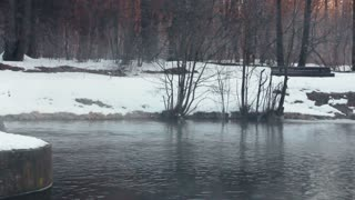 Winter river. Panorama of winter river with fog. Winter background. River in winter park. Mist over water. River bank covered with snow. Snowy winter park. Fog over cold river