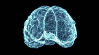 Holographic Grid Brain