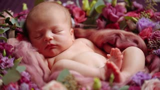 Cute newborn baby girl sleeping in flowers