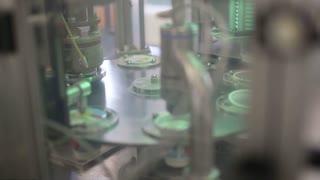Dairy plant conveyor