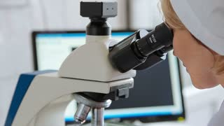 Microbiology laboratory work with microscope