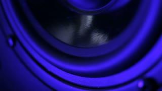 Multimedia system speaker detail
