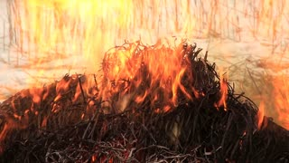 Stack of dry grass on fire