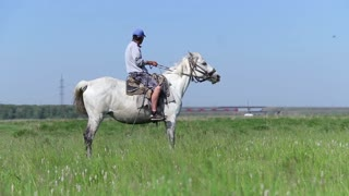 Man sitting on a white horse and looking in the distance on sunny day