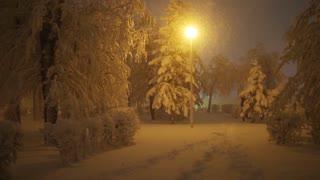 Man walks on snowy path in winter park at night