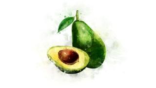 Animated illustration of Avocado