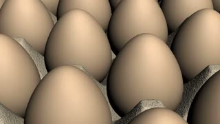 Brown Eggs Looping Animated Background