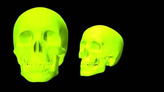 Skulls rotating into frame with dynamic strobe colors