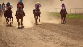 Horse Racing. Slow Motion