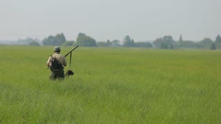 A hunter with a gun to hunt among the tall grass, shoots and gets into a bird