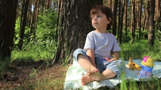 A small boy in the nature in summer