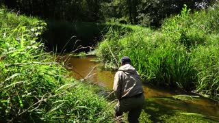 Fisherman catches a fly-fishing in a small creek