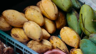 Fresh mango. On floating market in Thailand. A large number of mango prepared for sale