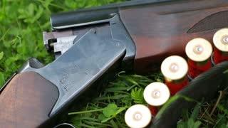 Hunting rifle close-up