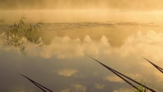 Rods fisherman lying in the water. In Waiting for a bite
