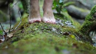 She goes barefoot on the green moss. Beautiful slim legs closeup