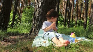 The child eats and eats the pine forest.