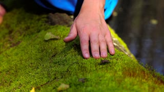 Woman's hand stroking the soft green moss