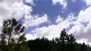 Clouds 1105: Time lapse clouds sail across a pale blue sky over pine-studded hills.