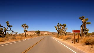 Highway 0107: A time lapse drive down a Joshua Tree highway.