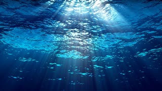 Oceanic 0209: Looking up at sunlight from underwater (Loop).